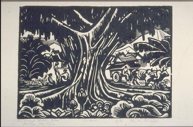Landschap Op Midden Java Met Een Waringinboom