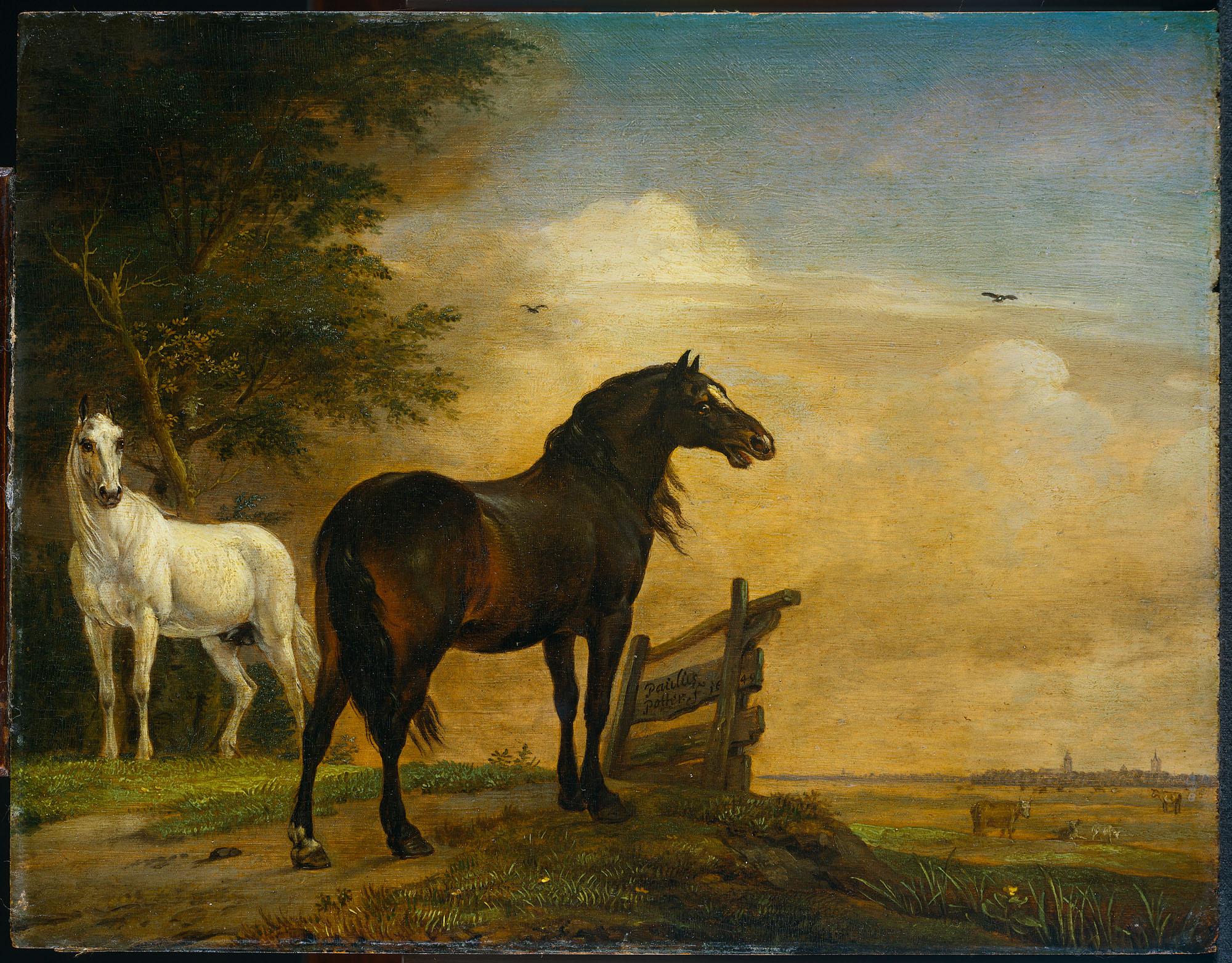 Twee paarden in de weide bij een hek   geheugen van nederland