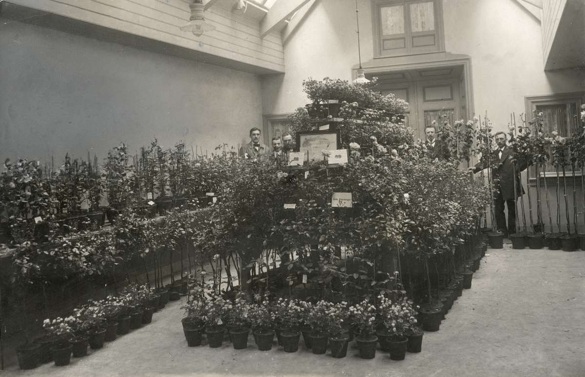 Interieur van winkel verkooplokaal van bloemen en for Interieur winkel amsterdam