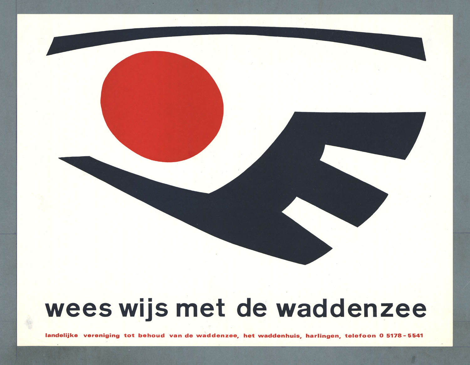 Image result for wees wijs met de waddenzee
